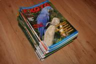 CZASOPISMA EXOTA ROCZNIKI 05/06/07/08/09/10/11