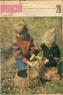 Płomyczek 1981