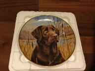 Talerz kolekcjonerski Labrador