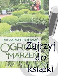 Jak Zaprojektować Ogród Marzeń Projekty Ogrodów 5313017735
