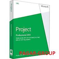 PROJECT 2013 PROFESSIONAL PL (H30-03729) FV