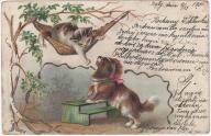 Pies kot hamak (1900)