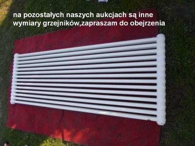 Irsap Tesi 2 1800x630 moc:1740W grzejnik kolumnowy - 5724367784 ...