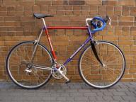 Gazelle Champion Mondial Reynolds 731os Campagnolo
