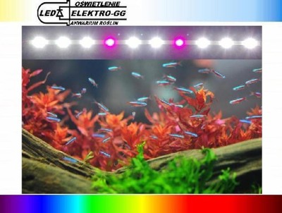 Oświetlenie Do Akwarium Power Led 10x1w 50cm Kpl