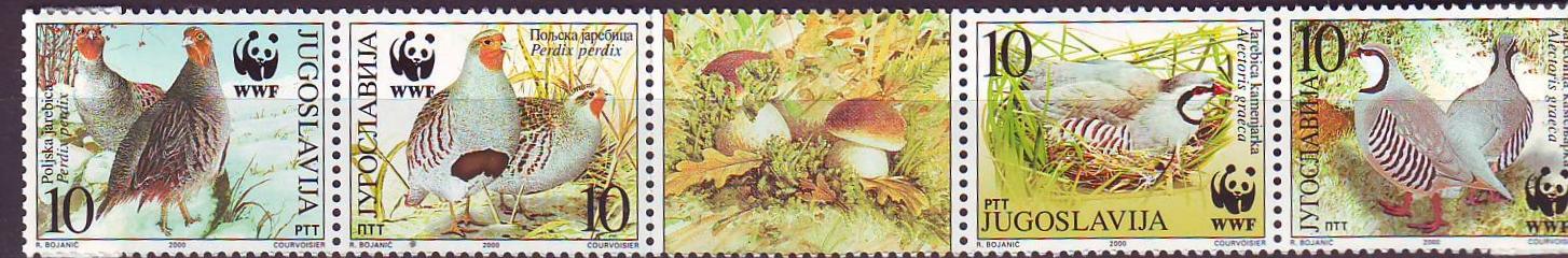 Jugosławia 2966-2969**, pzsek, Ptaki, 12 E!, opis