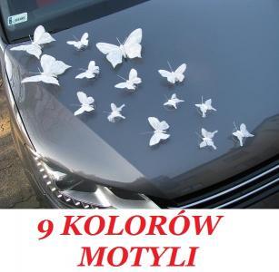 Dekoracja Samochodu Auta Na ślub Motyle Motylki