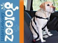 SZELKI SAMOCHODOWE dla psa pasy bezpieczeństwa XL