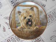 Yorkshire terrier - portet psa, talerz porcelanowy