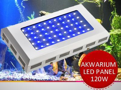 Lampa Led Oświetlenie Akwarium Słodkowodne 120w 5101700052