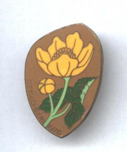 odznaka PTTK Chełm 1976 turystyka kwiat