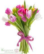 Kwiatowa Dostawa Bukiet 15 Kolorowych tulipanów