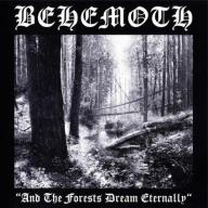 BEHEMOTH And The Forest Dream Eternelly NÓWKA 24h