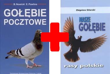 Gołębie Pocztowe Nasze Gołębie Polskie Rasy Gołębi 3774158999