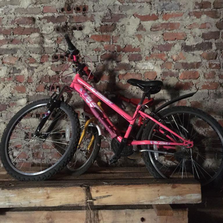 Rower concept młodzieżowy