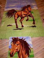Komplet Poszwa i poszewka Konie Koń 200x135cm