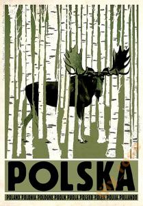 60 Plakatów Z Serii Plakat Polska Ryszard Kaja
