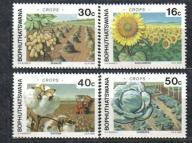 RPA BOPHUTHATSWANA Rolnictwo słonecznik Mi:206/09