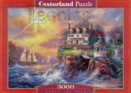 Puzzle 3000 Above the Fray CASTOR