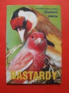 Kawczyński Krzyżówki ptaków Bastardy