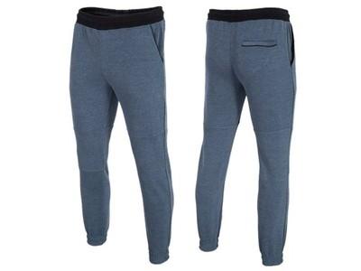 Spodnie dresowe męskie 4F Z16 SPMD002 r. M