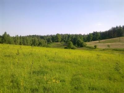 Piekna Działka na Mazurach 3157m2. na wzgórzu