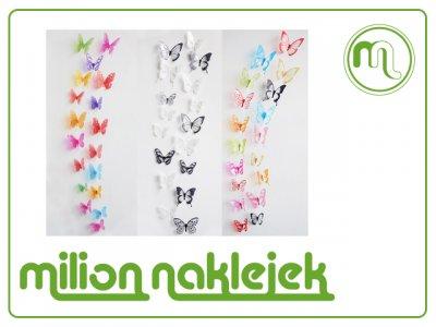 Motyle Dekoracyjne Na ścianę 3d Pcv Brokat 18 6321075594