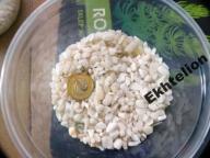 AQUAWILD ŻWIR WHITE KING MAJESTIC biały 1kg - EKH