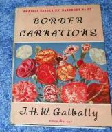 BORDER CARNATIONS - J.H.W. Galbally