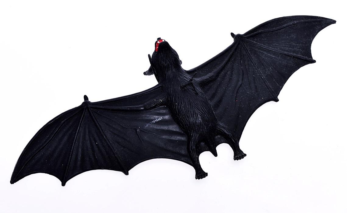 czarny nietoperz