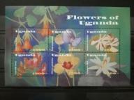 Czysty Flora Kwiaty - Uganda