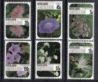 ANTYLE HOLENDERSKIE Kwiaty kwiat Mi:569/74