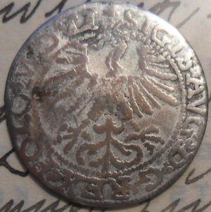 Półgrosz 1564 srebro