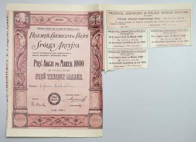 3113. Przemysł Chemiczny w Polsce, 5x 1.000mk 1920