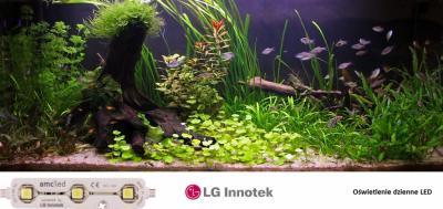 Zestaw Oświetlenie Led Lg Dzienne Akwarium 54l