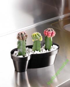 Doniczki Na Kaktusy Mitu Nove Kolory 30x3311 Cm
