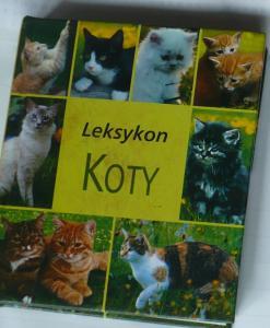 Leksykon - KOTY