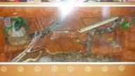Terrarium 125x47x58cm