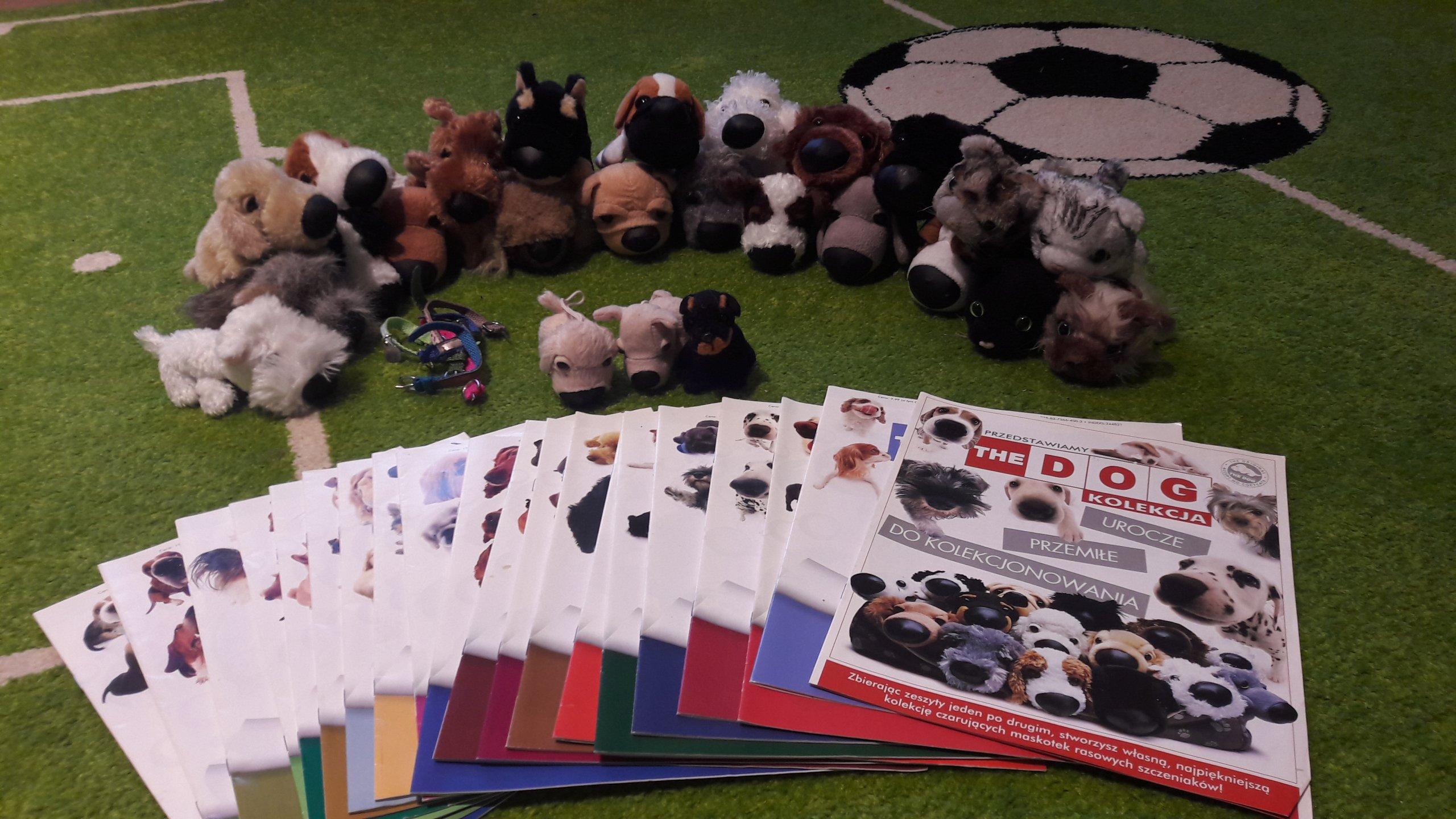 Kolekcja The Dog Zestaw Rasowych Pieskow 7075206439 Oficjalne Archiwum Allegro