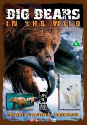 Big Bears In The Wild [DVD]