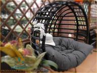 Fotel wiszący bujak huśtawka z wikliny