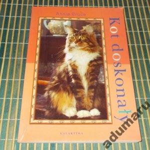 Annie Bruce - Kot doskonały