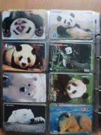 !!! JAPONIA, Fauna !!!
