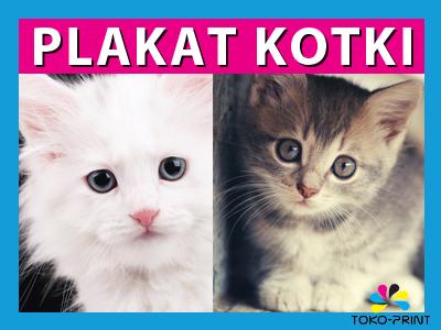 Plakat Koty Kot Kotki 90x60 Błysk 180g 50 Wzorów