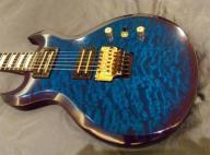 Washburn CS Scott Ian_gitara Iana z Anthrax_unique