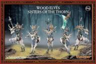 WOOD ELVES SISTERS OF THE THORN WARHAMMER