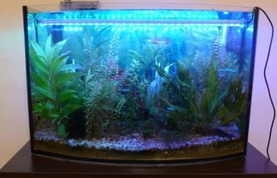 Oświetlenie Akwarium Podwodne Led 40cm Białe