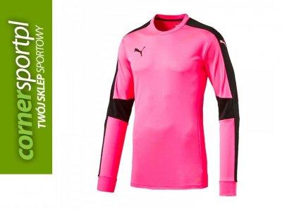Sklep Sportowy Piła > Bluza bramkarska adidas Onore 16 GK AH9700