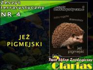 ZESZYT TERRARYSTYCZNY NR 4 - JEŻ PIGMEJSKI