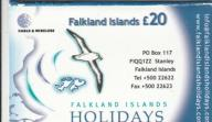 Falklandy - Falklands Holidays - Ptak